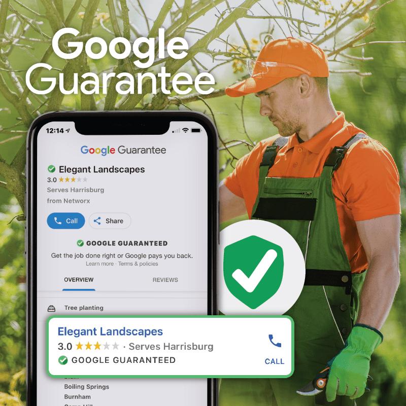 Google Guarantee Tree 01